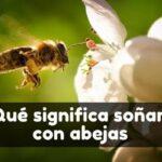 Soñar que veo abejas