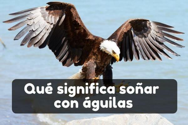 Ver águilas en sueños