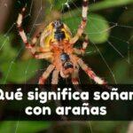 Ver arañas en sueños