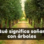 Ver árboles en sueños