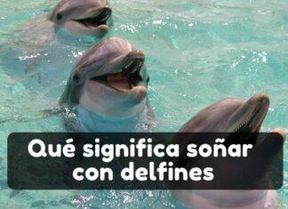 Ver delfines en sueños