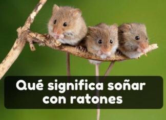 Ver ratones en sueños