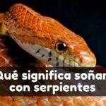 Significado de ver serpientes en sueños