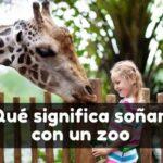 Ver un zoo en sueños