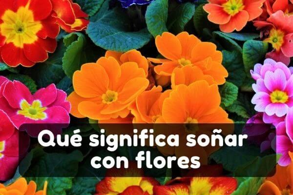 Ver flores en sueños