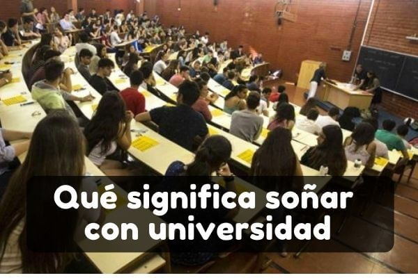 soñar con universidad significado