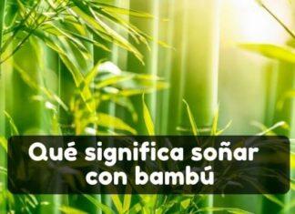 Qué significa soñar con bambú