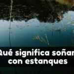 Ver un estanque en sueños