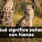 Ver hienas en sueños