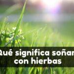 Ver hierba en sueños