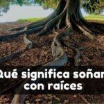 significado de soñar con raíces