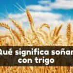 soñar con trigo significado